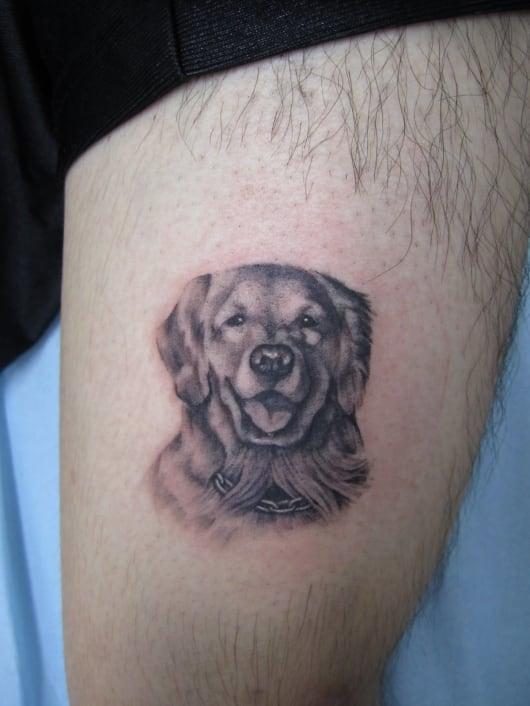 ブラック&グレー 犬 ゴールデンレトリバー