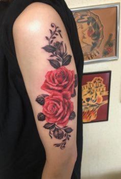 カラー 薔薇