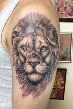 リアリスティック ライオン