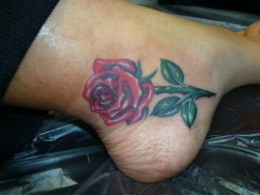 カラー バラ 薔薇 rose