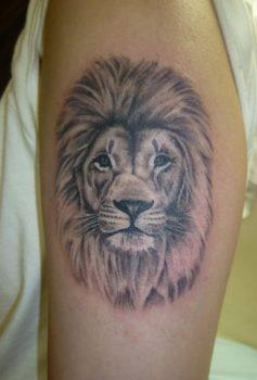 ブラック&グレー ライオン