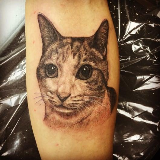 リアリスティック 猫 ネコ ポートレート