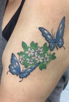 カラー 蝶 花