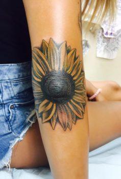 カラー ひまわり sunflower