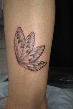 ブラック&グレー 蝶;羽