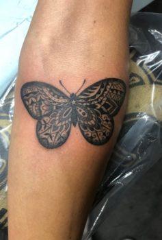 ブラック&グレー 蝶 バタフライ