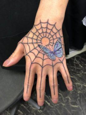 カラー 蜘蛛の巣と蝶