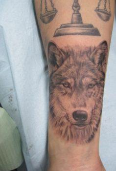 ブラック&グレー 狼